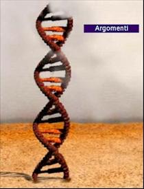 La scala del DNA