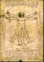 L'uomo di Vitruvio disegnato da Leonardo