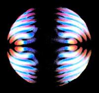 luce - cristallo convergente - cervello