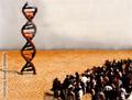 DNA pubblico