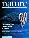 nature010823.jpg (9345 byte)