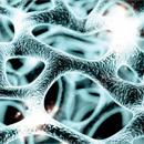 Emerging biotechnologies report