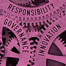 Challenges for Responsible Innovation: Leiden Review