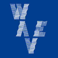 Wave - come l'ingegnosità collettiva sta cambiando il mondo