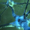 L'etica del nuovo. Nanotecnologie, neuroscienze e roboetica